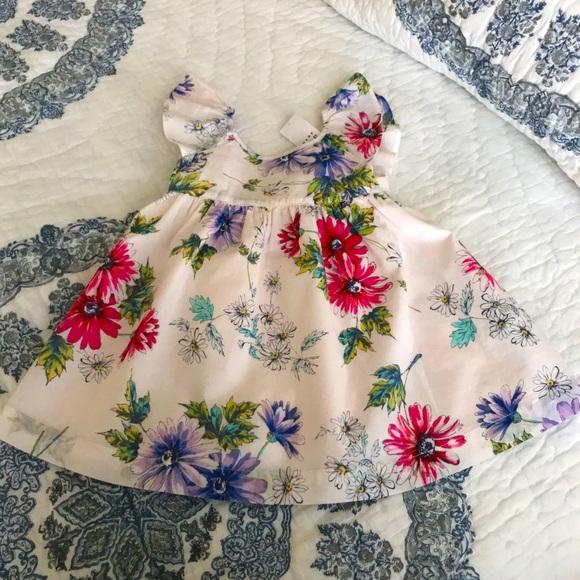 Baby Gap Sweet Ruffle Floral Dress Flutter Blush